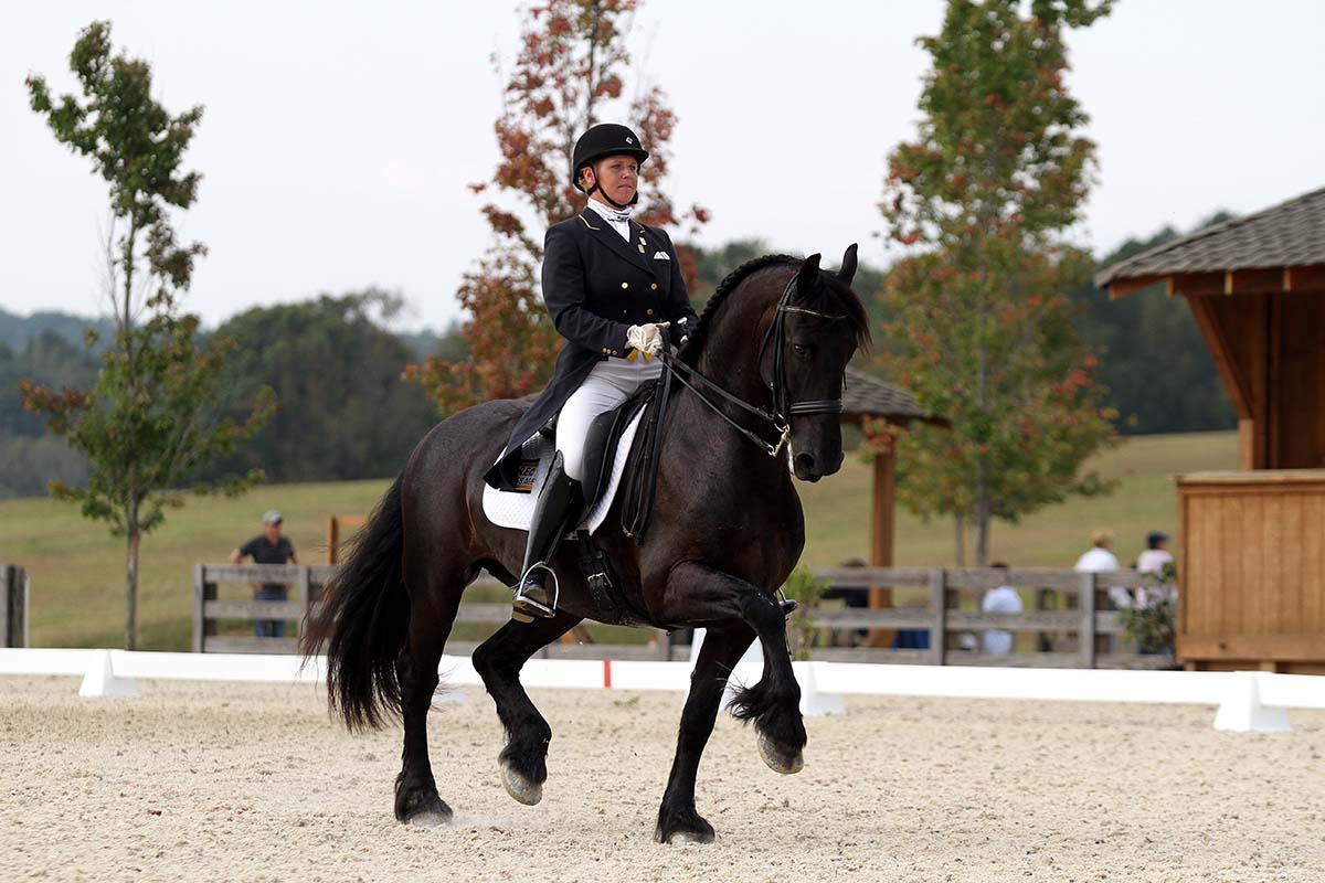 BREC Dressage - Ocala's Best Dressage Training and Horse Farm